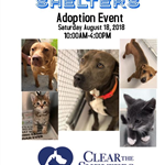 Clear the Shelters (AC) 8-18-18